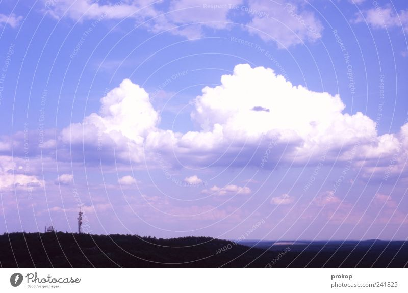 Nature and technology Environment Landscape Sky Clouds Climate Climate change Beautiful weather Forest Far-off places Horizon Telegraph pole Infinity Idyll