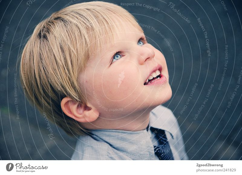 Human being Child Face Eyes Above Boy (child) Head Think Infancy Blonde Skin Wait Natural Nose Free Esthetic