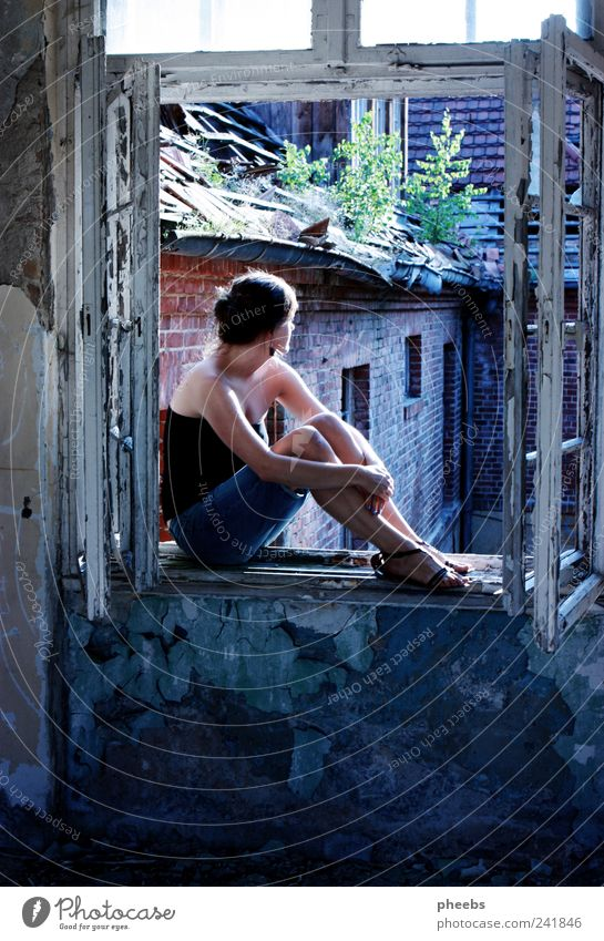 utopia Dismantling Window Vantage point Human being Woman Sun Building House (Residential Structure) Summer Old Plant Shadow