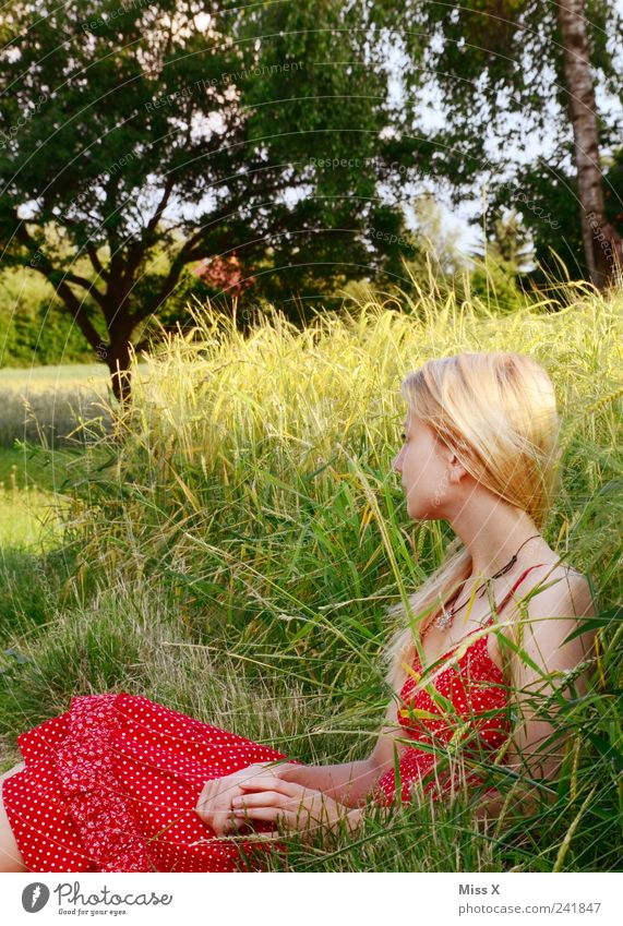 Human being Nature Youth (Young adults) Beautiful Red Summer Feminine Grass Adults Field Blonde Sit Wait Romance Dress Idyll
