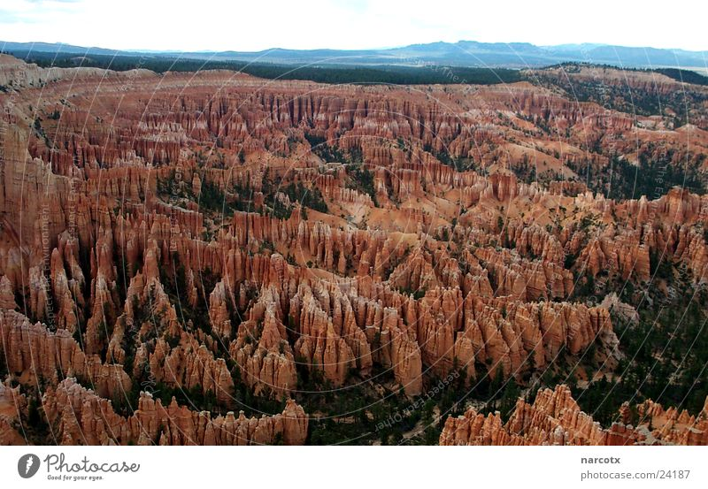 Far-off places Mountain Stone Rock Perspective USA Exceptional Americas Bizarre Canyon National Park Rock formation South West Bryce Canyon