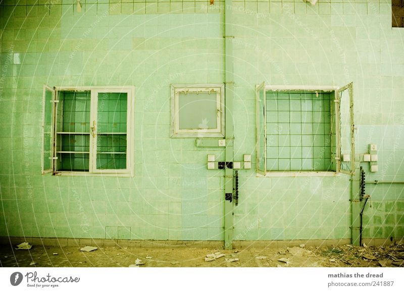Old Green Calm Loneliness Dark Wall (building) Window Architecture Wall (barrier) Building Door Facade Gloomy Factory Manmade structures Tile