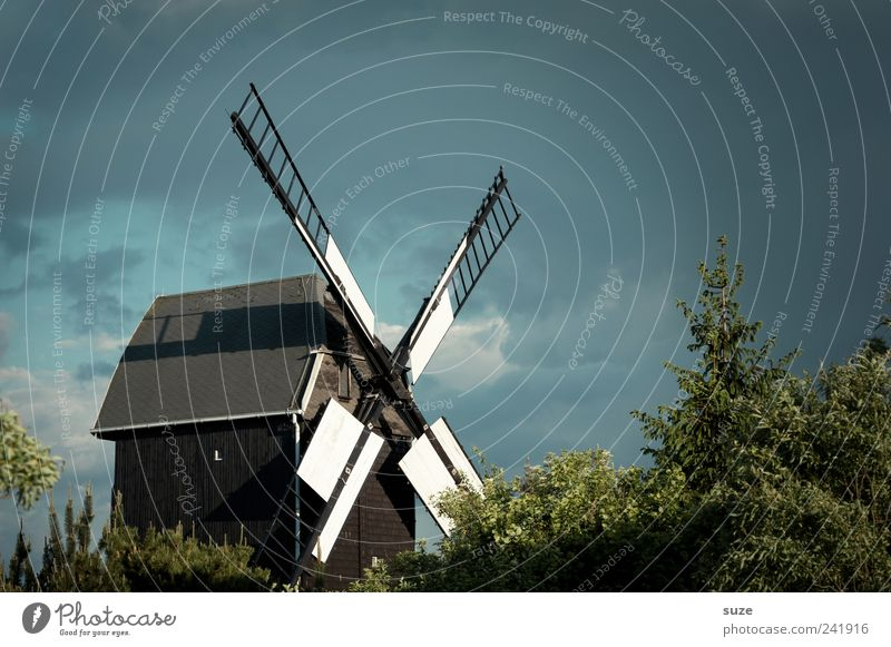 mill Agriculture Forestry Craft (trade) Environment Nature Landscape Sky Weather Tree Bushes Manmade structures Building Old Historic Mill Country life Windmill
