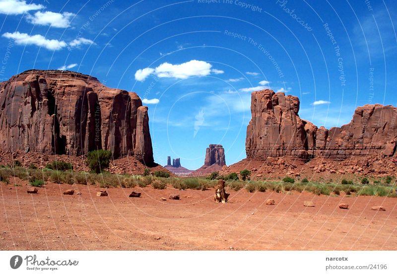Park Large Rock Might USA Americas Blue sky Film industry National Park Western Vest Impressive Monument Valley South West