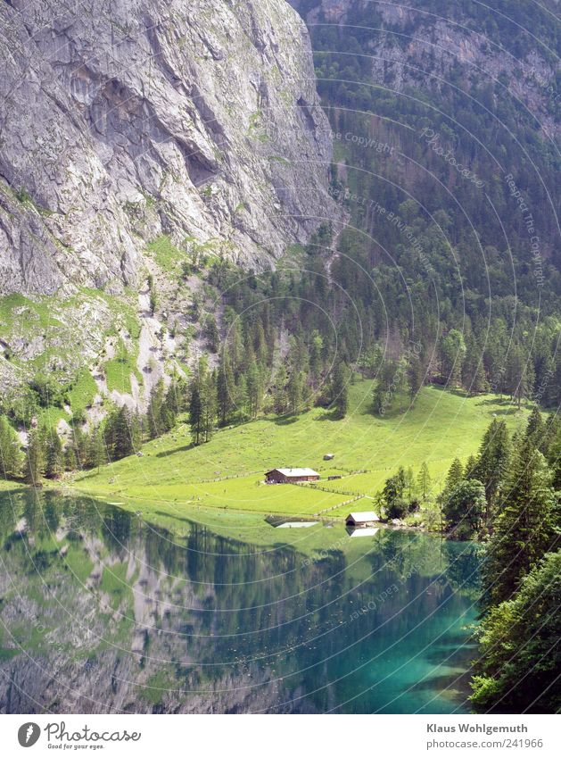 Water Green Blue Summer Beach Vacation & Travel Far-off places Forest Grass Mountain Gray Lake Waves Hiking Rock Tourism