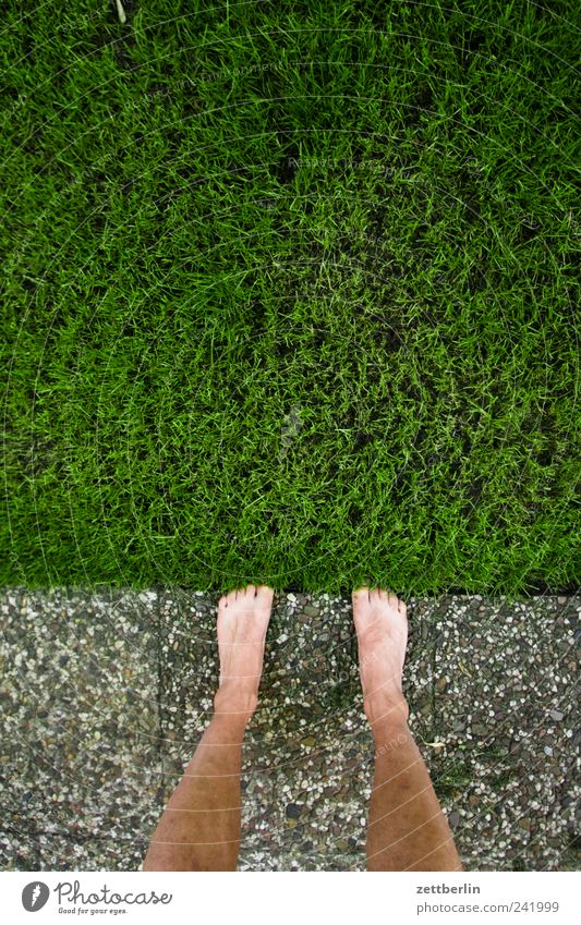 lawn edge Relaxation Vacation & Travel Tourism Trip Summer Garden Legs Feet 1 Human being Environment Nature Plant Foliage plant Park Meadow Stand Growth