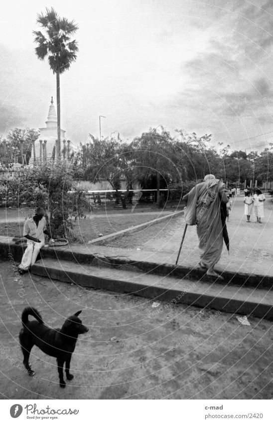Monk in front of Stupa - Sri Lanka Dog Human being Black & white photo