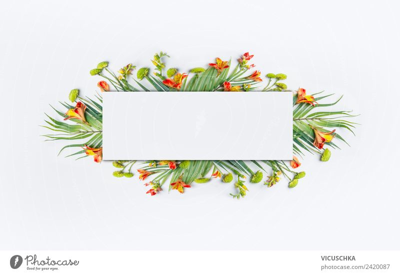 Frame with tropical palm leaves and flowers Style Design Vacation & Travel Summer Nature Plant Flower Leaf Blossom Flag Hip & trendy Background picture Hipster