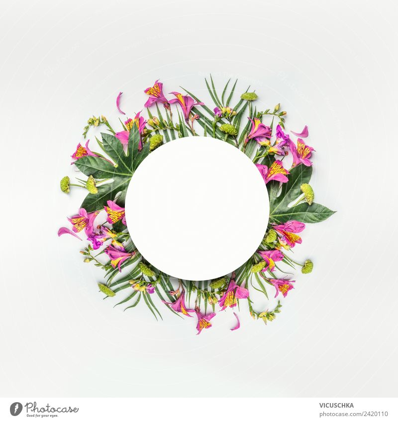Round frames with tropical flowers and leaves Style Design Exotic Vacation & Travel Summer Party Nature Plant Flower Fern Leaf Blossom Decoration Bouquet
