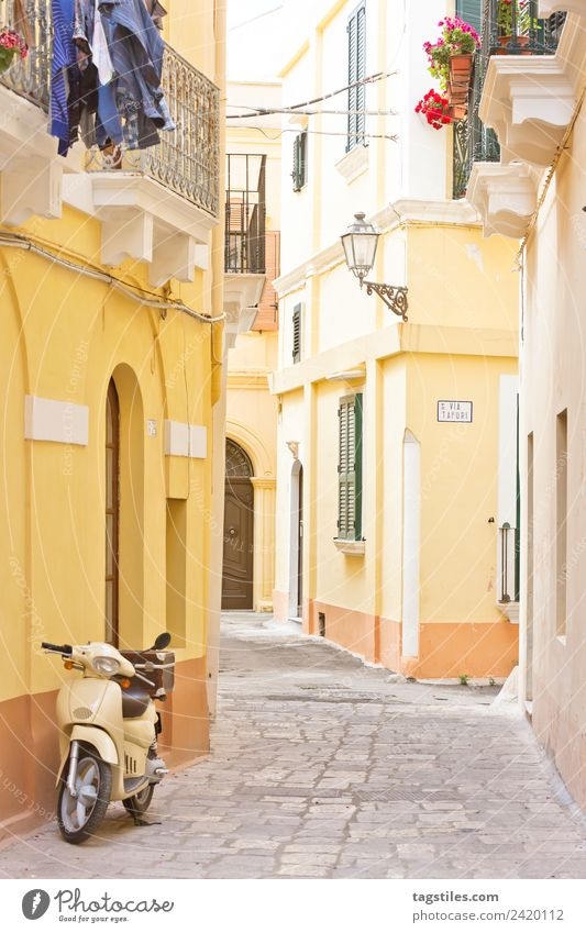 Gallipoli, Apulia - A motor scooter in a historical alleyway Alley Architecture Balcony City Europe Facade Fishing village folding shutter Historic Old town