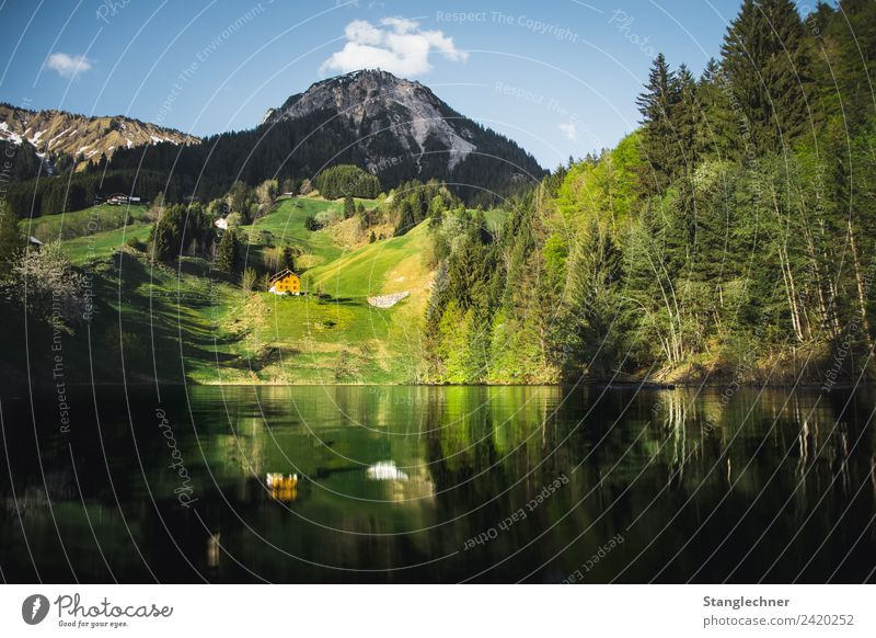 Nature Summer Blue Forest Mountain Environment Spring Lake Esthetic Wet Alps Austria Mountain lake Federal State of Vorarlberg