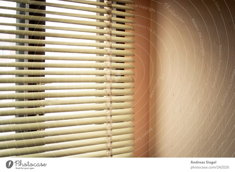 let the sunshine in Harmonious Relaxation Calm Living or residing Flat (apartment) Room Bedroom Window Venetian blinds Friendliness Bright Contentment