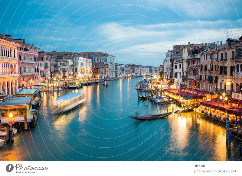 Venezia Vacation & Travel Summer Venice Tourist Attraction Italy Lagoon water Canal Grande canal tourism Italian Colour photo Evening Twilight Contrast Blur
