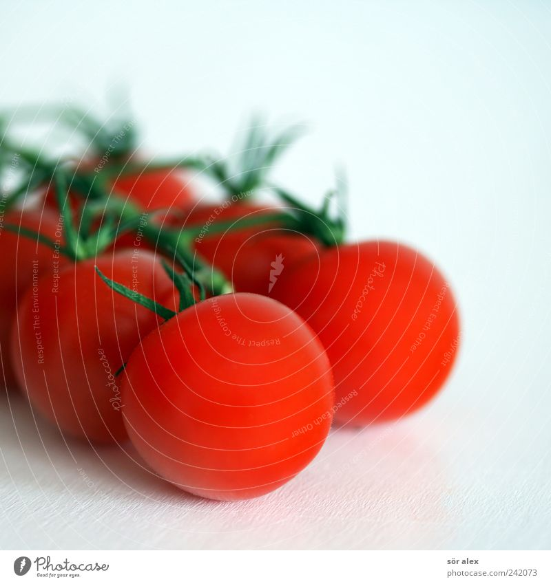 red white Food Vegetable Organic produce Vegetarian diet Diet Tomato Fresh Delicious Natural Round Green Red White Teamwork Bush tomato Healthy Eating