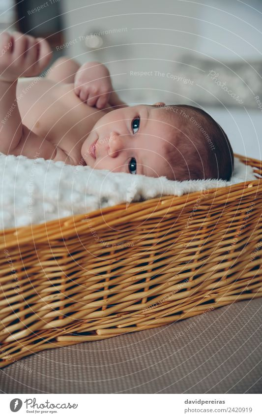 Baby lying in a wicker basket Beautiful Skin Life Calm Bedroom Child Human being Woman Adults Infancy Authentic Small Naked New Cute Innocent Basket awake kid