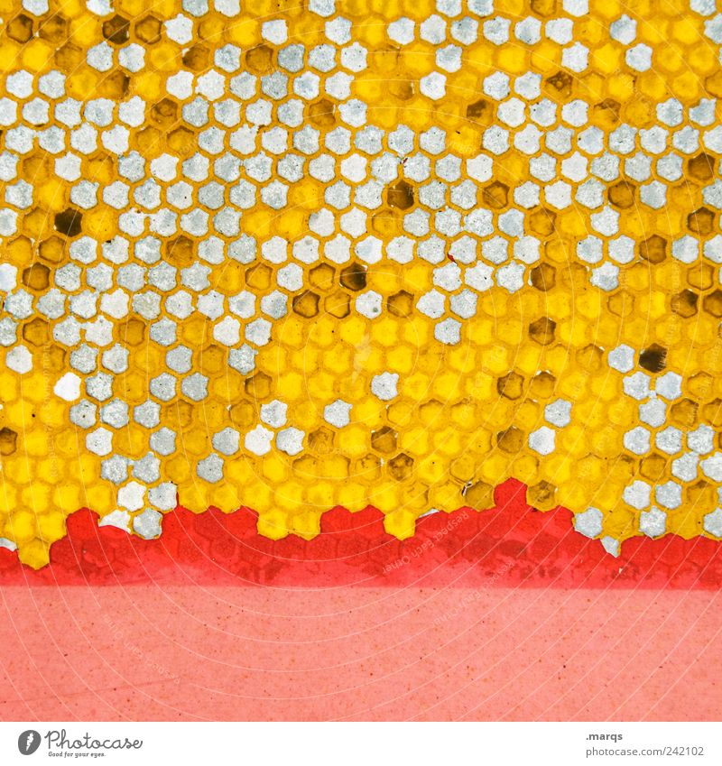 bee Style Design Sign Honey-comb Honeycomb pattern Many Yellow Pink Colour Arrangement Whimsical Colour photo Multicoloured Detail Abstract Pattern