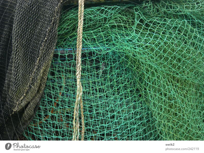 Green Black Gray Rope Authentic Near Net Simple Uniqueness Natural Infinity Dew Many Fishery Fishing net