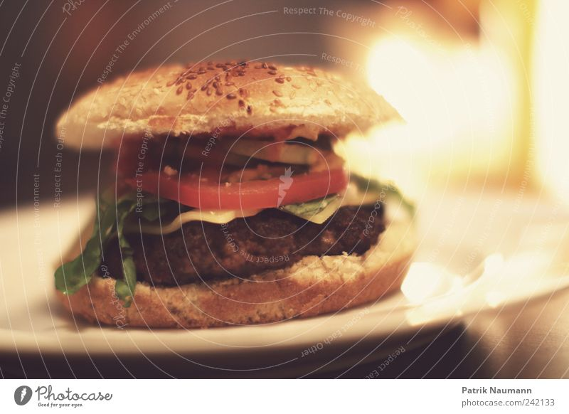 Nutrition Food Appetite Delicious Roll Fast food Unhealthy Hamburger Calorie Food photograph Sesame Meat loaf Rich in calories