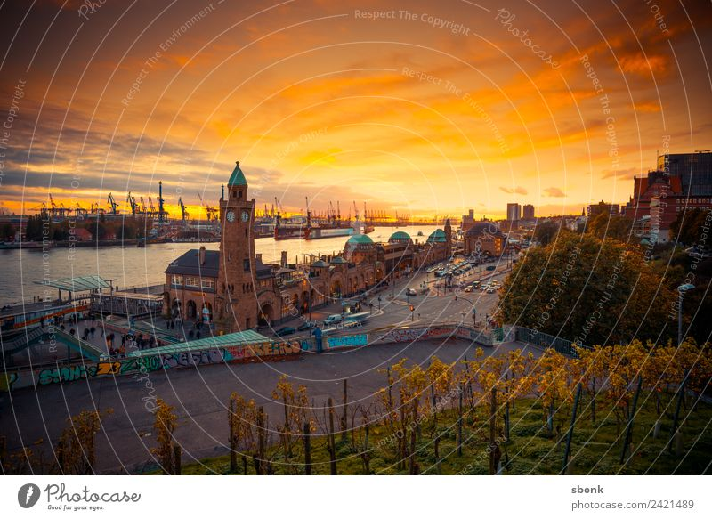 Hamburg Germany Village Fishing village Small Town Port City Downtown Outskirts Old town Skyline Orange harbour Elbe cityscape Colour photo