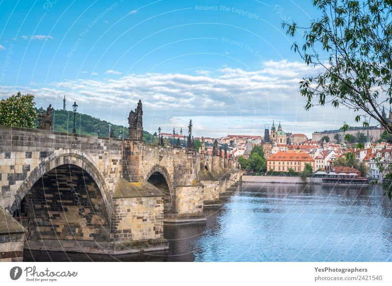 Charles Bridge on the side and Prague city Vacation & Travel Summer Beautiful Landscape Architecture Lifestyle Building Art Europe Tourist Attraction Old town
