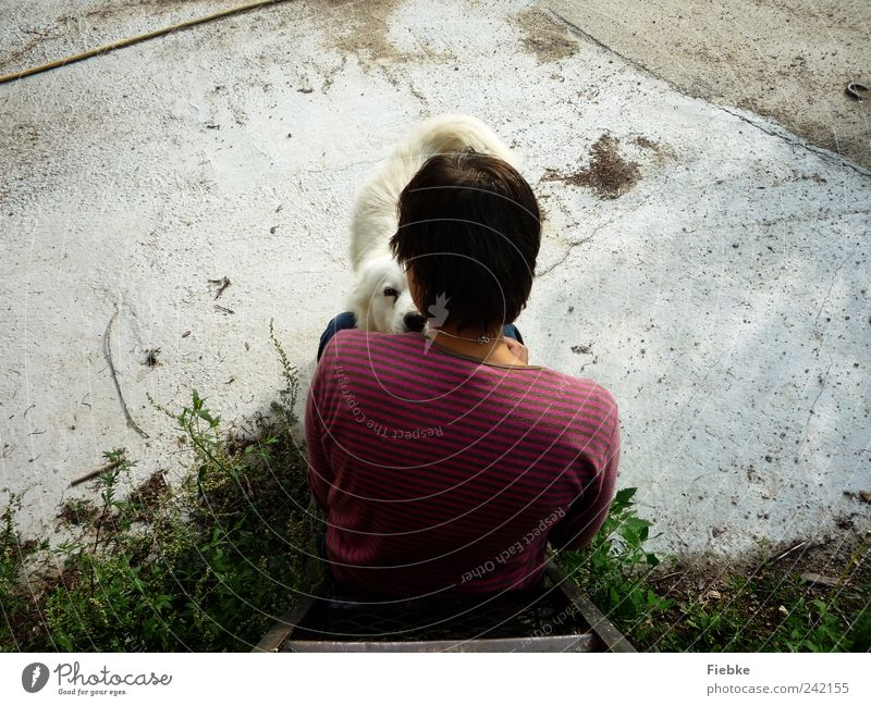Human being Dog White Summer Animal Calm Happy Friendship Together Back Sit Natural Protection Trust Beautiful weather Relationship