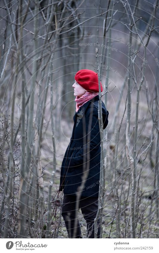 out Elegant Healthy Relaxation Calm Trip Adventure Far-off places Freedom Environment Nature Landscape Tree Forest Coat Cap Loneliness Emotions Hope Life