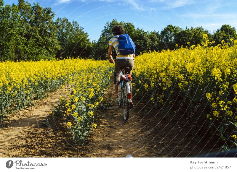 Young man riding his bicycle through a rape field Happy Life Contentment Leisure and hobbies Vacation & Travel Tourism Trip Freedom Expedition Cycling tour