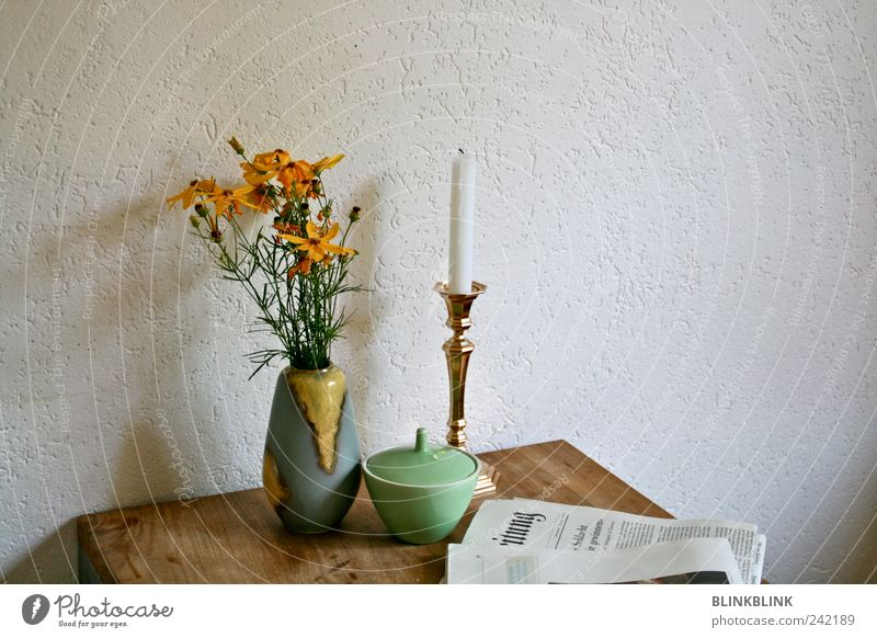 Beautiful Flower House (Residential Structure) Emotions Moody Interior design Contentment Room Gold Flat (apartment) Elegant Esthetic Table Decoration Lifestyle Living or residing
