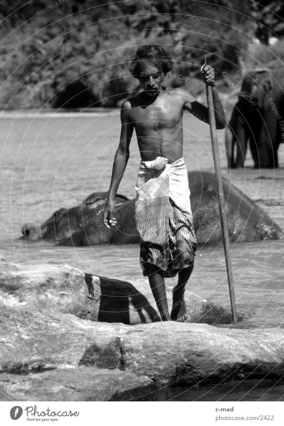 Mahout - Sri Lanka Elephant Work and employment Man Human being Water mahout Black & white photo