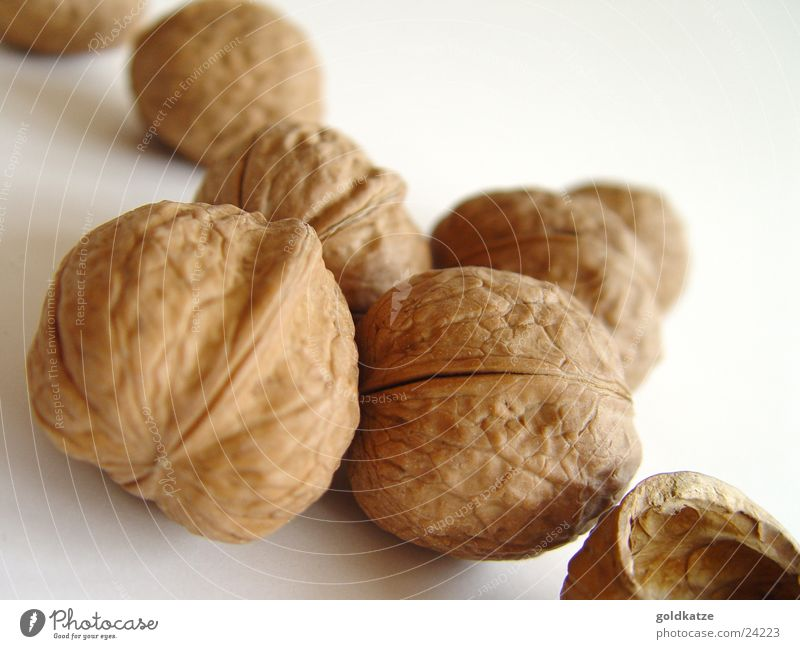 walnuts Food Fruit Nutrition Organic produce Vegetarian diet Healthy Thanksgiving Christmas & Advent Autumn Winter Garden Simple Firm Delicious Natural Round
