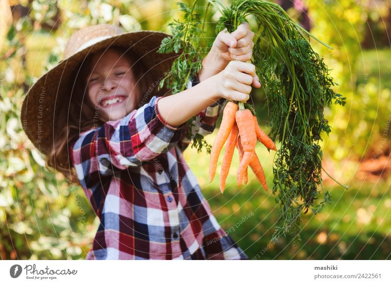 happy farmer child girl picking fresh home growth carrot Vegetable Lifestyle Joy Child Family & Relations Nature Landscape Autumn Growth Funny Natural Harvest