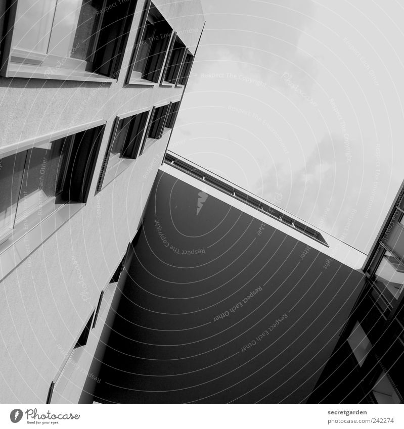 Sky Summer Calm Window Wall (building) Architecture Wall (barrier) Building Elegant Facade Modern Large Esthetic Growth Perspective