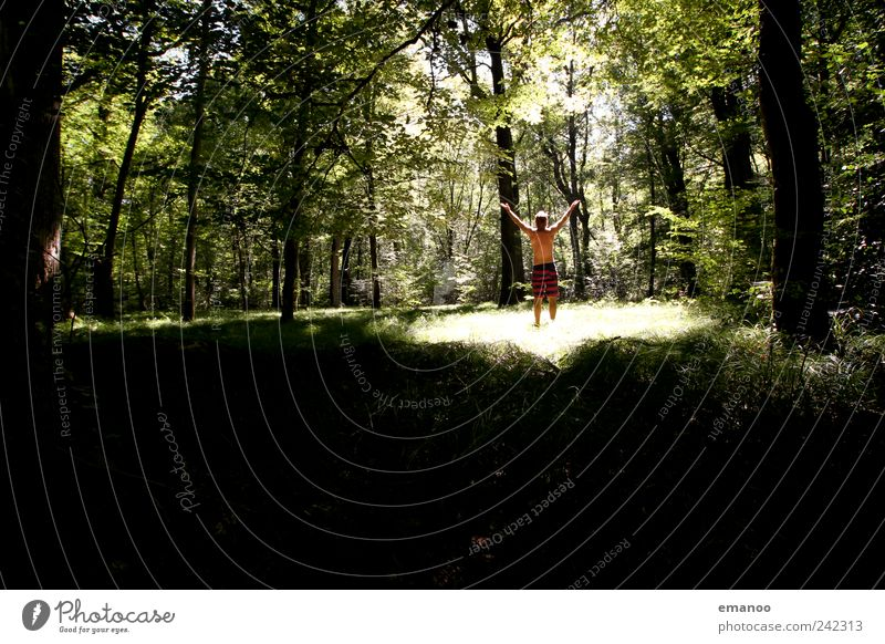 Human being Man Nature Green Tree Plant Vacation & Travel Summer Joy Adults Forest Landscape Freedom Grass Style Park
