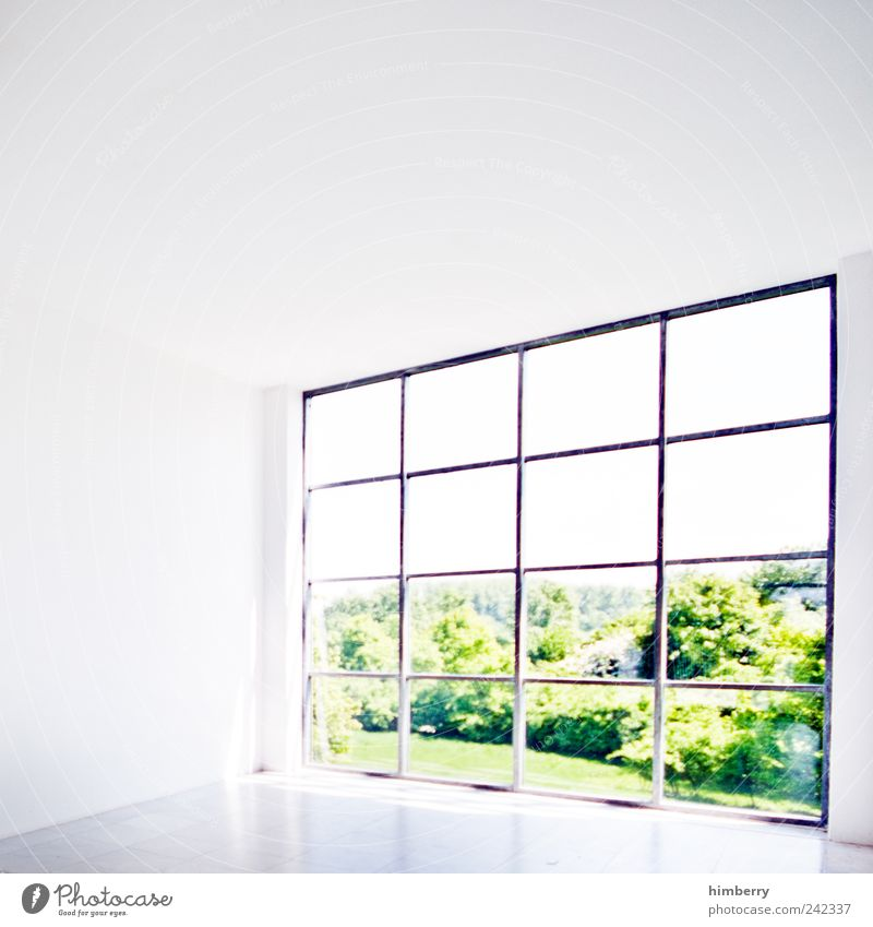 Nature House (Residential Structure) Window Wall (building) Environment Landscape Architecture Garden Wall (barrier) Building Office Park Weather Design Modern