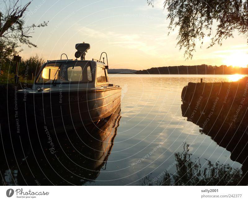 Water Sun Summer Vacation & Travel Relaxation Freedom Landscape Coast Moody Lake Watercraft Glittering Gold Trip Island Logistics