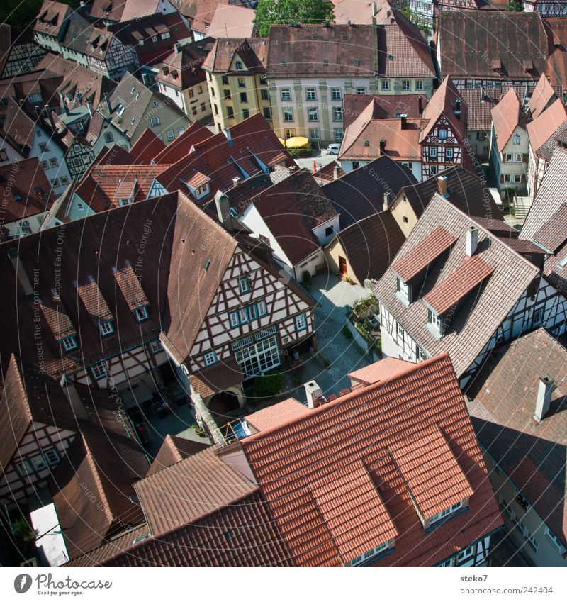 downtown Village Downtown Places Roof Red Half-timbered house Summer's day Bad Wimpfen Rhineland-Palatinate Medieval times Colour photo Exterior shot