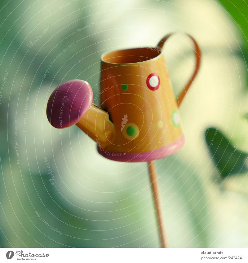 jug Decoration Metal Small Cute Jug Watering can Miniature Cast Gardening equipment Broomstick Blur Orange Colour photo Close-up Detail Deserted