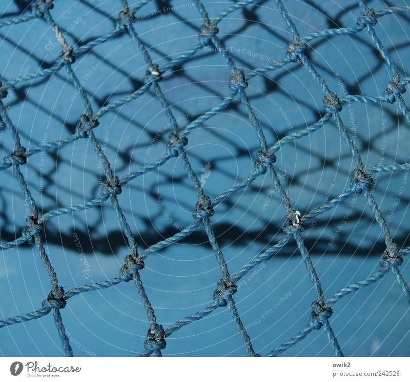blue knots Work and employment Profession Fishery Fishing net Knot Node Rope Reticular To hold on Firm Blue Attachment Copy Space Working equipment Colour photo