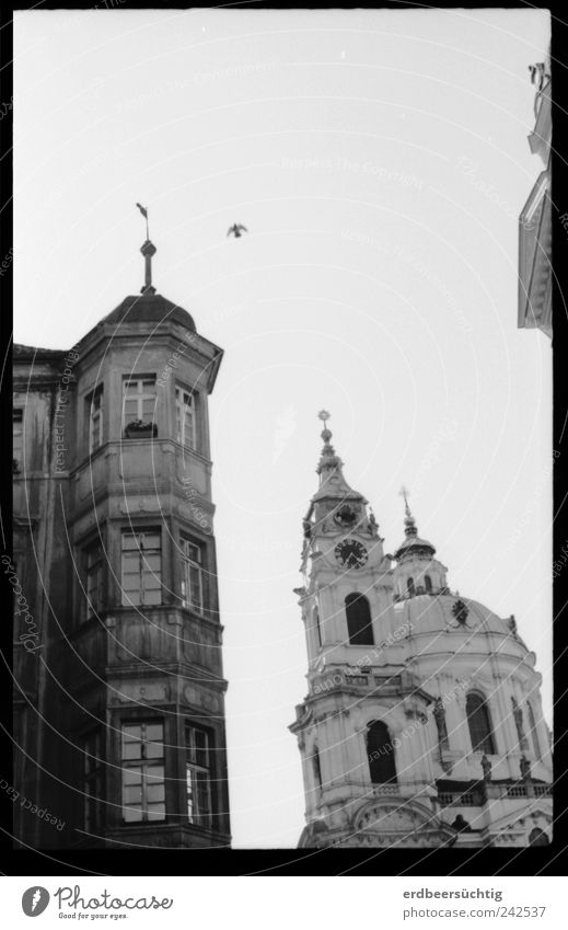 Old House (Residential Structure) Dark Freedom Building Bright Bird Architecture Flying Facade Hope Modern Church Peace Wing