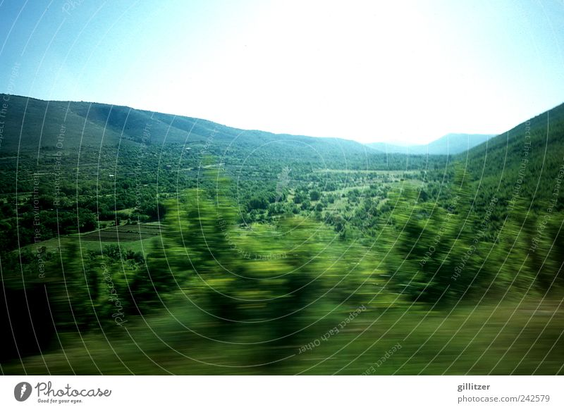 Croatia, hinterland Environment Nature Landscape Plant Elements Earth Air Sky Cloudless sky Horizon Sunlight Summer Beautiful weather Meadow Forest Hill