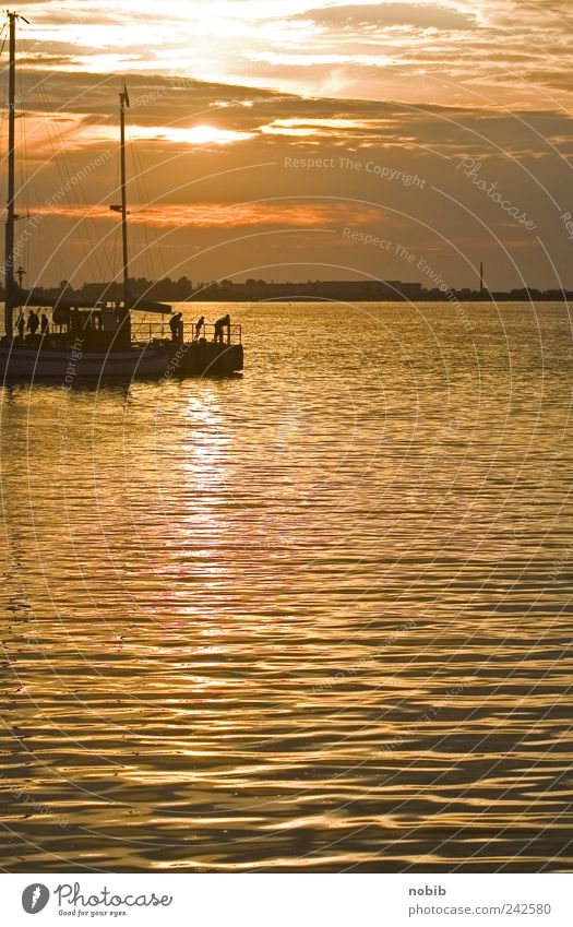 Water Summer Clouds Far-off places Gray Orange Coast Gold Horizon Hope Island Stand Harbour Illuminate Bay Navigation