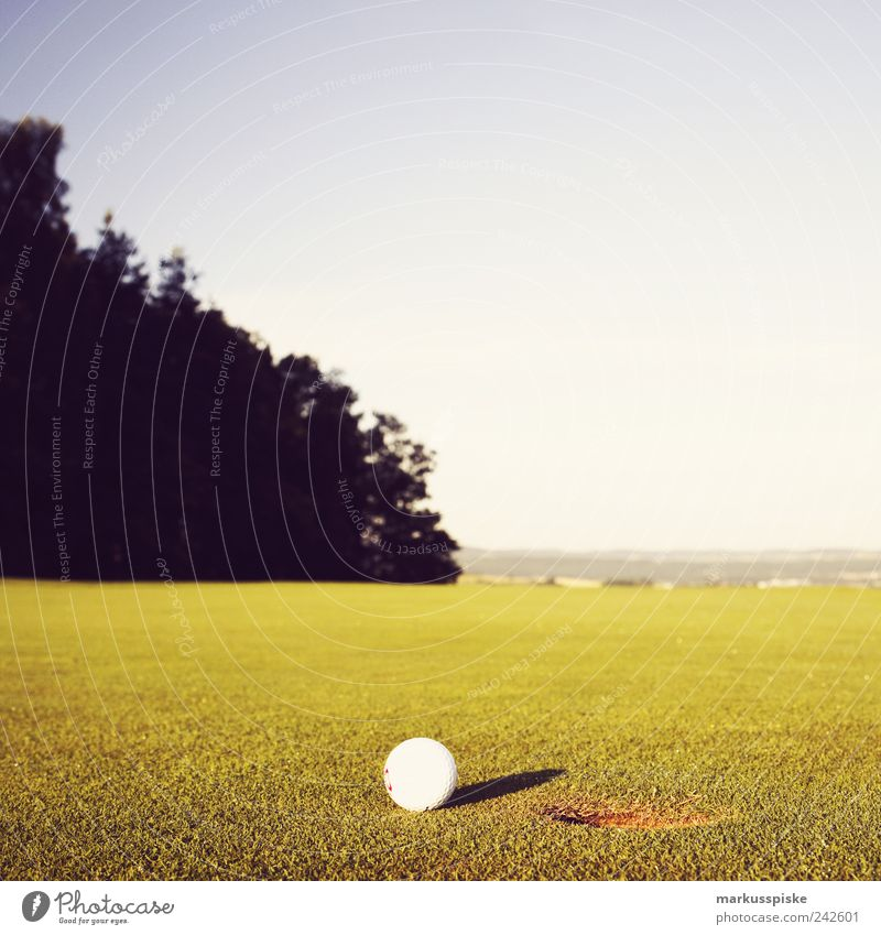Vacation & Travel Calm Relaxation Sports Playing Field Leisure and hobbies Trip Tourism Golf Well-being Hip & trendy Summer vacation Golf course Hole Golf ball