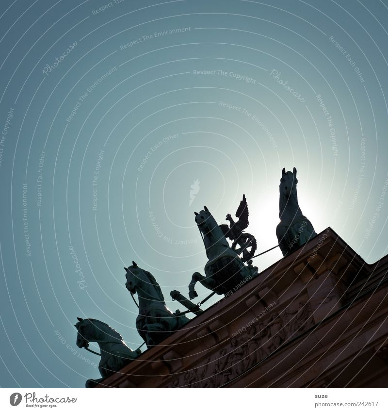 Sky Blue Sun Berlin Art Germany Europe Esthetic Culture Symbols and metaphors Horse Historic Manmade structures Cloudless sky Monument Statue