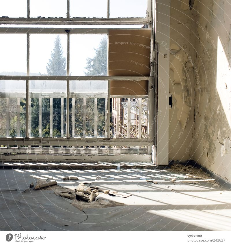 Calm Loneliness Life Wall (building) Window Death Wall (barrier) Dream Room Time Esthetic Floor covering Living or residing Change Uniqueness Transience