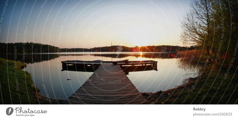 brown pond Water Sunrise Sunset Lakeside Pond Jetty Romance Serene Calm Relaxation Leisure and hobbies Nature Environment Colour photo Exterior shot Deserted