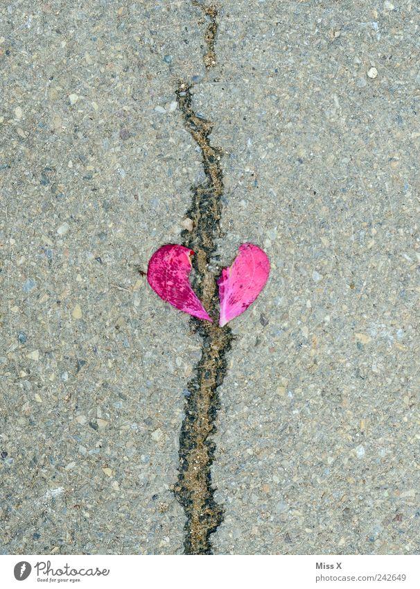 Red Emotions Stone Sadness Pink Heart Crack & Rip & Tear Infatuation Broken Divide Concern Lovesickness Blossom leave Divorce Heart-shaped
