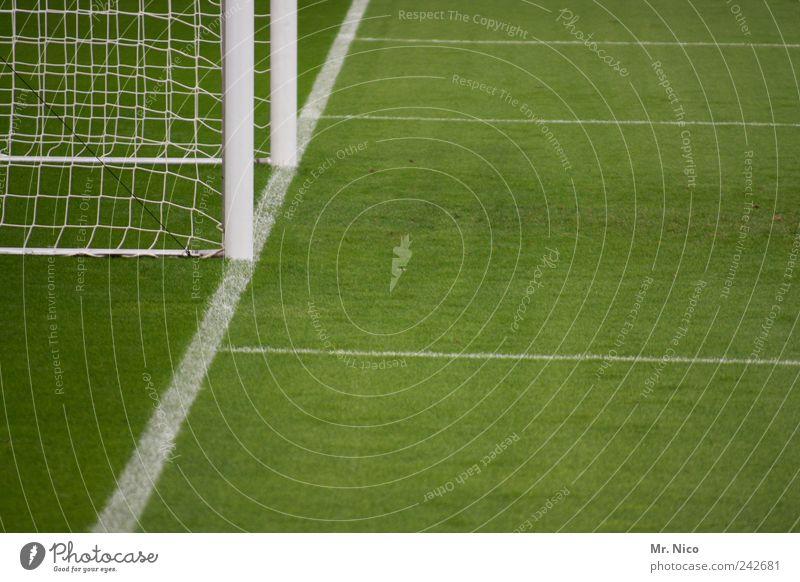 Green Meadow Sports Grass Line Leisure and hobbies Soccer Break Net Goal Pole Stadium Football pitch Ball sports World Cup Soccer Goal