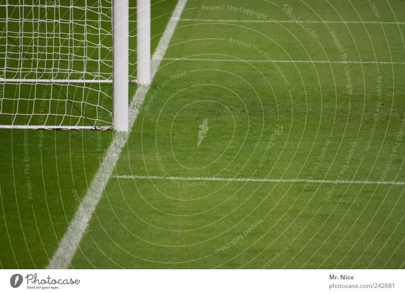 """""""Not as long as you."""" Sports Ball sports Goalkeeper Sporting Complex Football pitch Stadium Grass Meadow Green Soccer Goal Line Net Sideline Penalty area"""