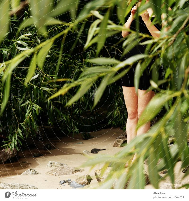 Human being Youth (Young adults) Green Tree Plant Beach Adults Relaxation Feminine Sand Legs Stand Bushes River Dress Observe