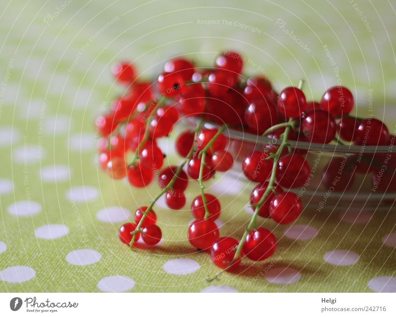 White Green Red Small Lie Fruit Glass Nutrition Natural Food Fresh Esthetic Healthy Eating Round Simple Point
